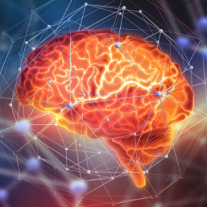 Human brain. Neural networks and artificial intelligence. Creati
